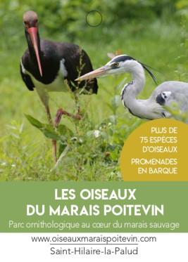 Les oiseaux du Marais Poitevin